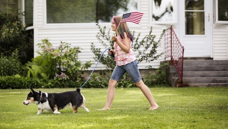 Keeping Your Dog Inside All Day