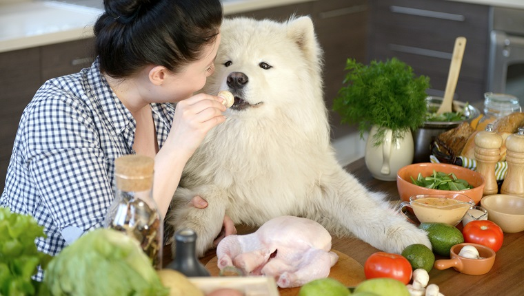 Make Your Dog A Home Cooked Meal!