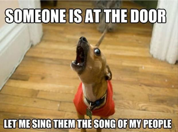 Barking Dog Song Meme